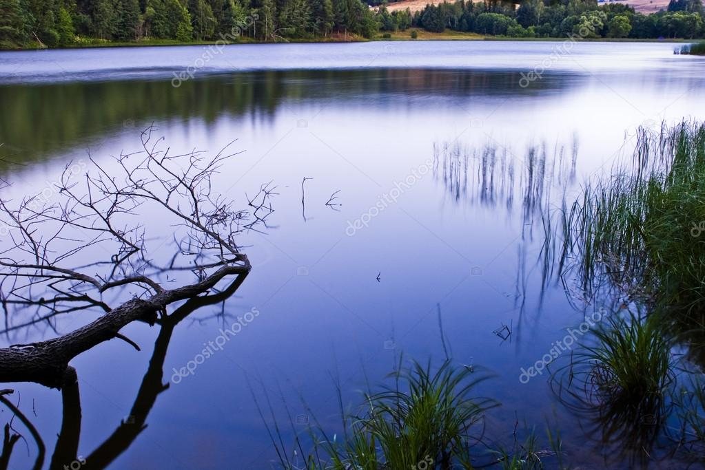 Tree fallen and mountain lake in morning light — Stock Photo #14048270