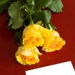 Roses and card — Stock Photo #14662099