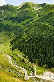 Montanhas verdes de verão — Foto Stock