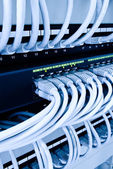 Network cables in data center — Stock Photo