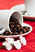 Grãos de café e flor — Fotografia Stock
