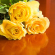 Stock Photo: Three yellow roses