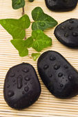 Spa black stones with water-drops — Stock Photo