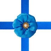 Blue bow and ribbons — Stock Photo