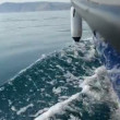 Motor boat in sea. Clear water — Stock Video