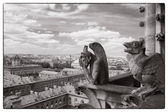 Daemons of cathedral of Notre Dame — Stock Photo