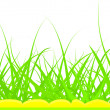 Green grass - Stock Vector