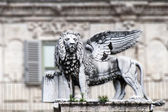 The lion of saint Marco, Verona — Stock Photo