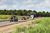 Truck for transport of sugarcane — Stock Photo