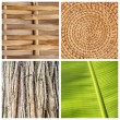 Stock Photo: Natural textures