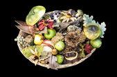 Herbstliche früchte — Stockfoto