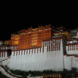 Royalty-Free Stock Photo: Potala palace in the night