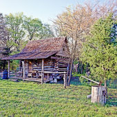 Old Log Cabin in woods — Stock Photo