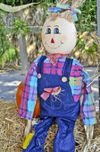 Halloween Straw Man — Stock Photo