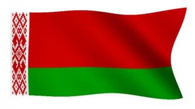 Flag of Belarus — Stock Video