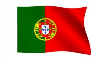 Flag of Portugal — Stock Video
