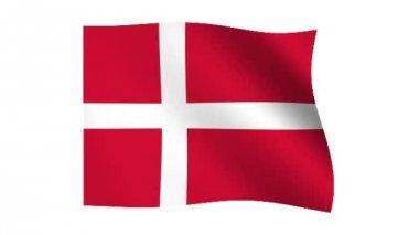 Flag of Denmark of video — Stock Video