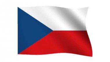 Flag of the Czech Republic — Stock Video