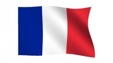 Flag of France — Stock Video