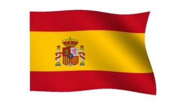 Flag of Spain — Stock Video