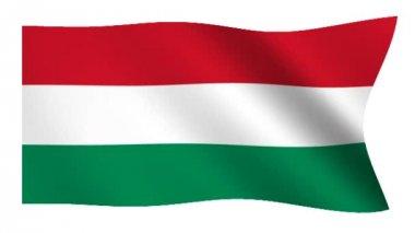 Flag of Hungary — Stock Video