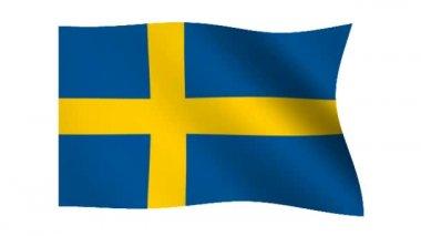 Flag of Sweden — Stock Video