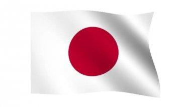 Flag of Japan — Stock Video
