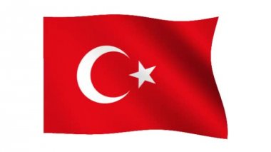 Flag of Turkey — Stock Video