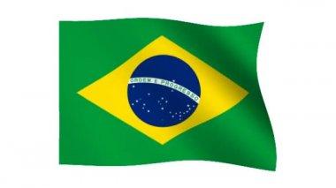 Flag of Brazil — Stock Video
