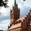 Cathedral in Kaliningrad. Russia — Stock Photo #38957307