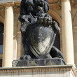 Sculpture of lion. Kaliningrad — Stock Photo #38957559