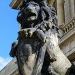 Sculpture of lion. Kaliningrad — Stock Photo #38957721