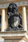 Sculpture of a lion. Kaliningrad — Stock fotografie
