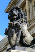 Sculpture of a lion. Kaliningrad — Foto Stock