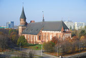 Kant's cathedral in Kaliningrad. Russia — Stockfoto