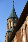 Cathedral in Kaliningrad — Foto Stock