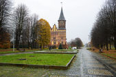 Kaliningrad weather, views of the cathedral — Foto de Stock