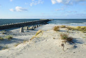 Baltic sea coast — Stock Photo