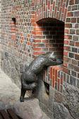Bronze sculpture of a cat. Kaliningrad — Stock fotografie