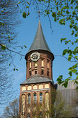 Clock in the tower of Kant's cathedral in Kaliningrad — Stockfoto