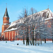 Cathedral. Kaliningrad — Stock Photo #38972187