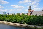 Kenigsberg Cathedral. Kaliningrad — 图库照片
