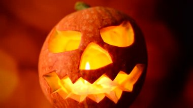 Halloween jack o lantern — Video Stock