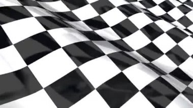 Checkered racing flag — Stock Video