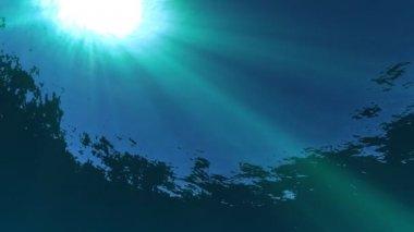 水下的阳光 — 图库视频影像