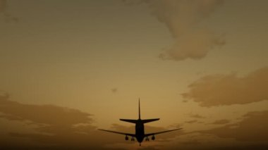 посадку airbus — Стоковое видео