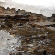 Streamlet in spring, melting of ice and snow — Stock Video #42896759
