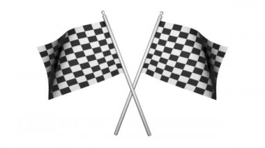 Racing Flags — Stock Video