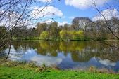 Lake in  Botanical Garden in Kaliningrad — Stock Photo