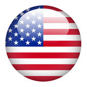 USA flag on button — Stock Vector